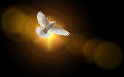Discover the 9 Gifts of the Holy Spirit